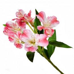 Альстромерия (розовая)