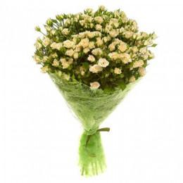 Букет №150 (25 куст.роз, декор.зелень)