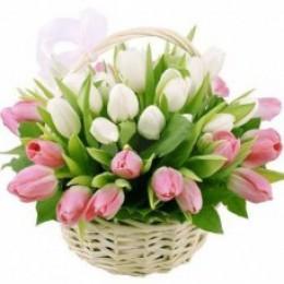 Корзина №5 (29 тюльпанов, декор.зелень)
