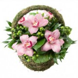 Корзина №10 (5 орхидей, 6 гиперикум, декор.зелень)