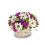 Корзина №16 (3 хризантемы, 3 гвоздики, 3 куст.гвоздики, декор.зелень)