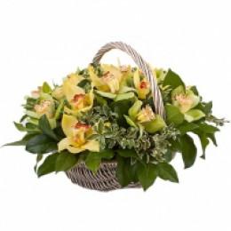 Корзина №18 (21 орхидея, декор.зелень)