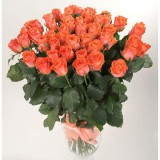 Букет 75 роз (пример-розы Дарк Вау)