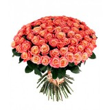 Букет 101 роза (розы Мисс Пигги)